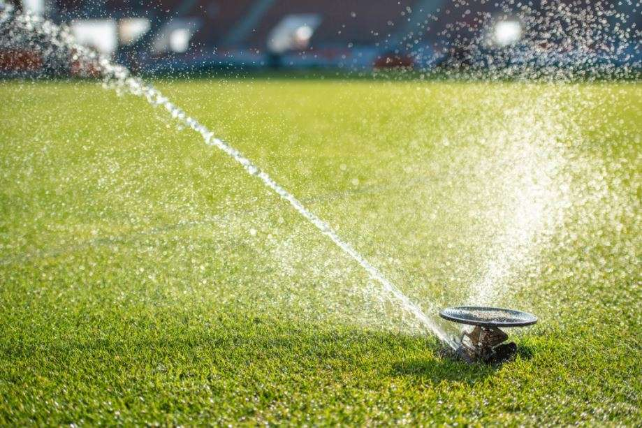 prevent dead grass by watering properly.